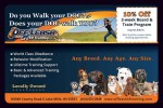 Off Leash K9 Training coupons in May 2016 Dollars & Sense Magazine Madison Wisconsin
